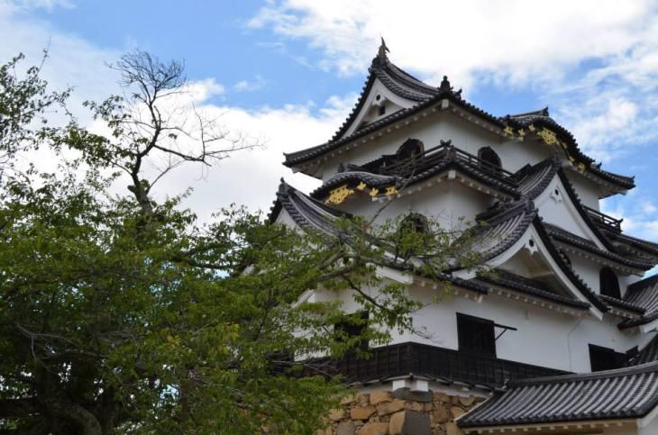 Hikone Castle (Dani Stafford).jpg