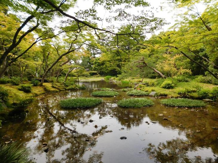 Kyoto Gardens - Elise.jpg