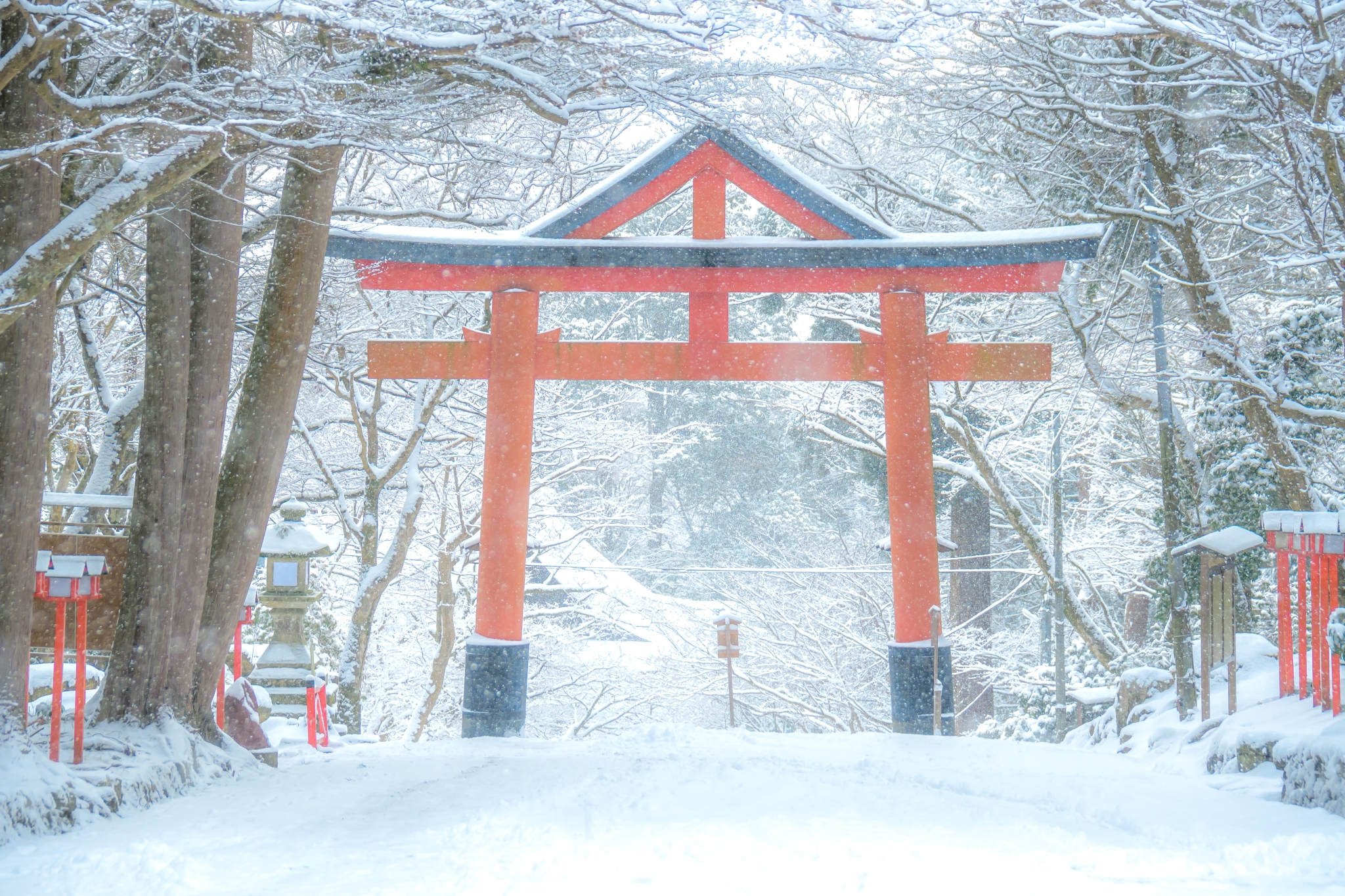 Tori gate covered in snow